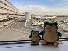 [木曜日] やってきました。羽田空港。今年初ひこーきです。 私も、お目付役のこいつらもワクワクしてます(^_^)