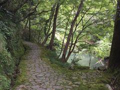 苔生した遊歩道は風情があります