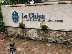 時間になったのでホテルへ ルシアン旧軽井沢に泊まります。  玄関がとにかくおしっこ臭いのが気になりました。