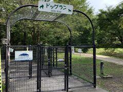 この日はランに行けていなかったので、湯川ふるさと公園の無料のランへ寄りました。