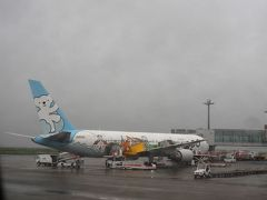 雨模様でちょっと肌寒い羽田空港。 あと数日後から、東京都民にもGoToキャンペーンが適応になりますが。 子供たちが大きくなるにつれて、悲しいことにあれこれ日程の制約が厳しくなってしまい、なかなか家族そろって旅立つチャンスが見つけられない我が家。 なのでGoToを待ちきれずに出発します。 エア・ドゥの特別塗装機に会いました。