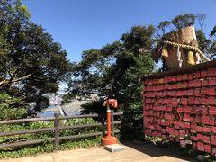 江島神社 むすびの樹