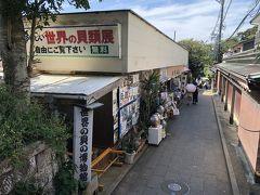世界の貝の博物館/貝広物産店