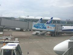 2020/9/20(日) おはようございます! 半年ぶり以上のフライトにワクワク。 空港に来ると旅にでるぞスイッチが入り、テンション上がります^^  ANA羽田~米子便は、通常6便あるのに、2便へ減便。 ANA383便 09:25発で米子へ向かいまーす。  フーミンママに頼まれた崎陽軒のシウマイ買ってたら、ファイナルコールだったよ。