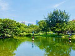 中央公園内の池