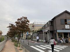 駅前のペリカンコーヒーを横目に見ながら、紅葉したハナミズキの並木を歩く。
