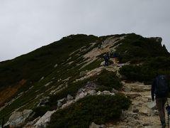 目的地の唐松岳山頂が見えてきました。 登り返しであのピークが唐松岳山頂です