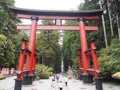 この大鳥居は日本最大木造鳥居と言われています。