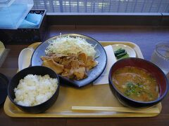 レオンのしっぽは生姜焼き定食を注文しました。諏訪湖を見下ろしながら、美味しく戴きました。