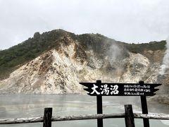 大湯沼をすぐそばから。 「表面50℃、最深部130℃。 中州に入ると埋ります」 注意喚起らしからぬユーモア?  (9:08)