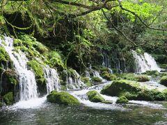 元滝伏流水。鳥海山に降った雨や雪解け水が湧き出ています。