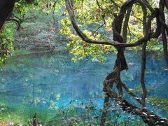 鳥海山からの帰り道、「丸池様」に寄り道。なかなか、わかりづらい場所にありました。