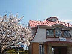 田園調布駅周辺の桜巡りをしました。