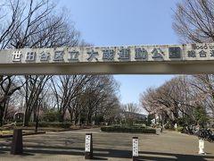 続いて砧公園にやってきました。 こちらは砧公園に隣接する大蔵運動公園です。