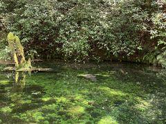 2月にも来た池山水源 本当にきれい! さすがに真冬と違って人がいました