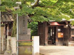 天王寺 谷中霊園桜並木の突き当り、日暮里駅寄りにある天台宗のお寺です。 奈良の十輪院を模した古風で優美な姿の本堂は昔ながらの寺院建築、そして近代建築の上善堂(講堂)と客殿とが見事に調和しているところが特長と言われます。