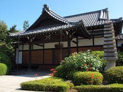 安立院 本堂 天王寺山門前の細い道を右手に進んだところにある曹洞宗系の単立寺院です。創立当時は天王寺の支院であったとか。