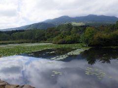 道の駅「しなの」から10キロも離れていないところに「いもり池」があるというので行ってみました。しかし、山を下りたり登ったり県を跨いだりで結局30分近くかかりました。