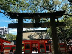 お散歩がてら住吉神社にやってきました