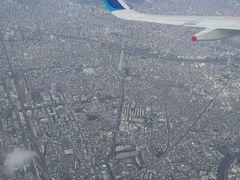 離陸して間もなくフライトは東京の空を左に旋回します。 窓から見降ろすと翼のANAの文字の下に東京スカイツリーが 見えてきました。 スカイツリーを空中から見降ろすのは初めての体験です。