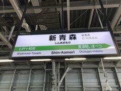 新青森到着!はるばる東京から長かった・・・ と言いたいところですが、おしゃべりしてたのでそこまででも。 電車の旅は楽でいいね。 難を言えば、騒音対策の防御壁が多くてあまり車窓が楽しめなかったな。 今度ローカル線の旅をしようっと。