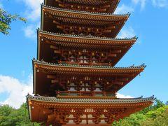 天橋立「文珠荘」をチェックアウトし、天橋立を右手に見ながら遊覧船で北の対岸「一の宮」へ。 ケーブルカーで「笠松駅」まで登り、そこから先ずは登山バスで「成相寺」まで行きました。
