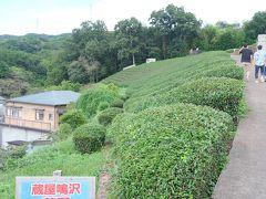 お土産屋の裏手を登ると茶畑があり、そこにある展望台から反射炉と富士山をダブルで眺めることができるそうなので行ってみましょう。