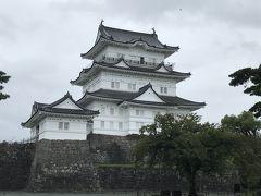 この日は、雨&平日と言うことで、小田原城も空いていました。中に入ってみました。