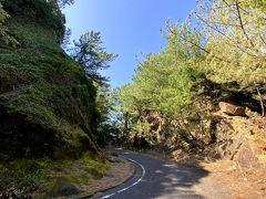世界遺産の登録区域にある林道を走ります。  道幅狭いです。