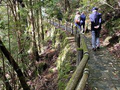 午後からは、「ヤクスギランド」に行きました。  数々の屋久杉を整備されたルートで見ることの出来る場所です。