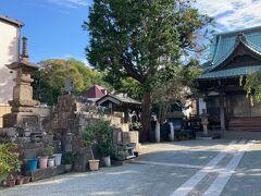 見所15:荘厳寺