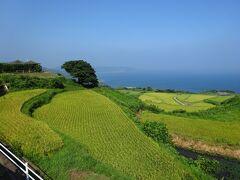 元乃隅神社から4km、眼下に日本海を望める東後畑棚田に到着。夕方はもっと美しいそうです。