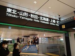今年に入ってから初めての旅行らしい旅行だったので、前の日の夜はなかなか寝付けず眠い目をこすりながら東京駅へ。 旅行どころか東京駅へ来たのも今年初めてかも。 一時期は近場の公園ですら自粛警察がうるさかったですからね。