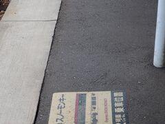 元成田エキスプレスのスノーモンキなのか 駅にある時刻表からは読み取れません