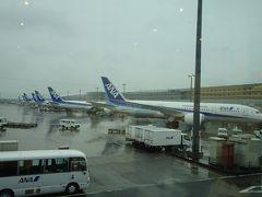 羽田空港にはANA機がずらり。そういえば、羽田で国内線→国内線の乗り継ぎは初めてな気がします。バス移動のサテライトだったのでラウンジには寄れず。