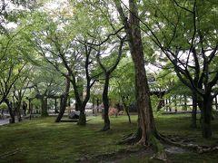 東福寺の拝観料は、本坊庭園と通天橋の共通拝観で1,000円