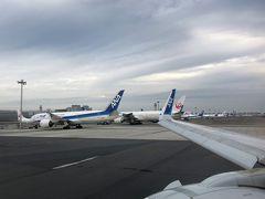 今日の機材は国際線仕様のA320。 お休み中の青い翼と赤い翼が仲良く並んでます。 今回使ったのは、GoToトラベルキャンペーン使用可能なANAのパック。 それと一緒に、広島県が独自にやっている「広島県誘客促進支援事業」、通称「広島へ行こう!」も使いました。 「広島へ行こう!」とは、今いろんな自治体で創意工夫をこらして行っているキャンペーンの一つ。 こちらは宿泊費の一部を広島県が補助してくれます。