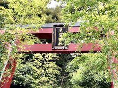 来宮神社は、熱海の守神として、古くから信仰されてきて、全国四十四社の来宮の総社だそうです。