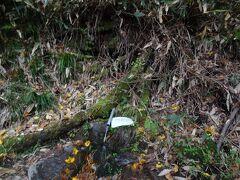 昔は岩壁から豊かな清水が湧き出ていたところです。 昭和40年代の道路工事により岩壁そのものは失われました。 現在は岩壁の近くのわずかな湧水が岩清水と呼ばれています。