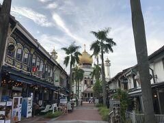 コロナ禍で観光客はいませんが、この通りに並ぶ中近東レストランには、ちらほらと華人系シンガポール人が食事に来ていました。