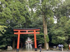 ここも、マストの訪問地でしょう・・・。霧島神宮。  4年連続で来てる??