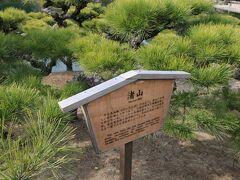 掬月亭東側の築山である渚山。