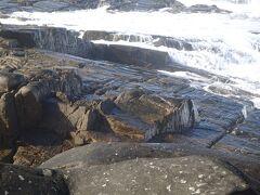 むき出しの岩がムシロを敷き詰めたようになっています。