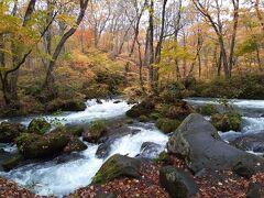 阿修羅の流れ。川が岩にぶつかって2筋に分かれて豪快に流れています。