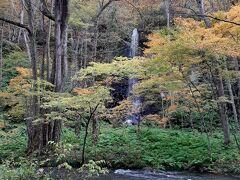 白糸の滝。  奥入瀬川の対岸から真っすぐきれいに流れ落ちる滝。
