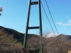 もみじ谷大吊橋に来ました。