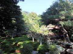 お庭をお散歩できます  八王子山を借景にした庭園。カメラの腕がイマイチなので、こんなんですが、本当に見事な景色でした