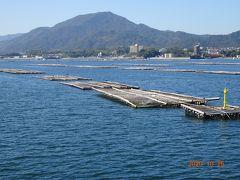 宮島は牡蠣の養殖が盛んですので、養殖棚が見事に並んでいます