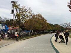 大濠公園。みんな走っています。