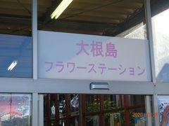 大根島に向かい由志園を観光します